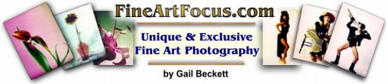 fine art photography, flower pictures, professional photography, flower photos, commercial photography, art photography